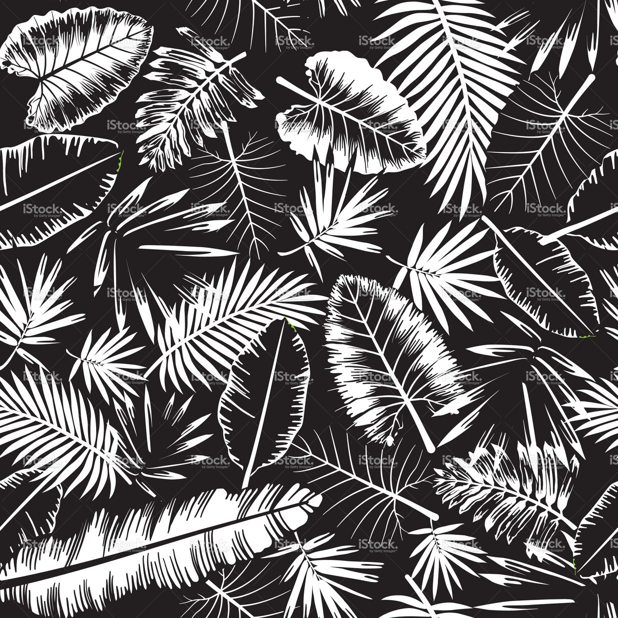 Seamless Black And White Tropical Jungle Pattern With Jungle Leaves  # Muebles Hutam Ltda