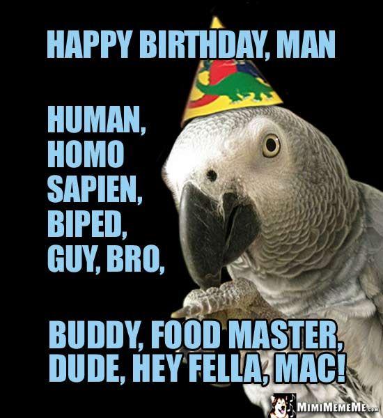 Party Bird Says: Happy Birthday Man, Human, Biped, Guy