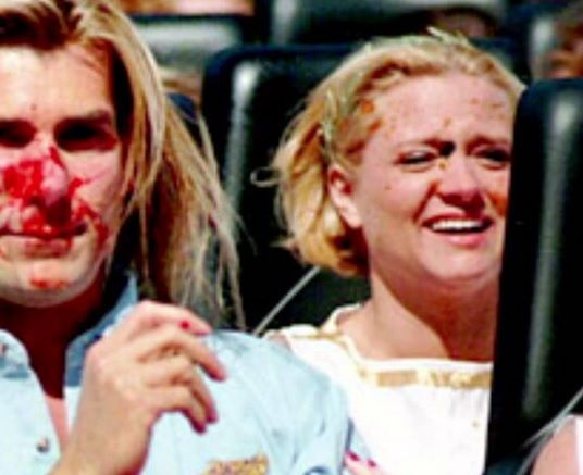 Remember When That Goose Smashed into Fabio's Face ...
