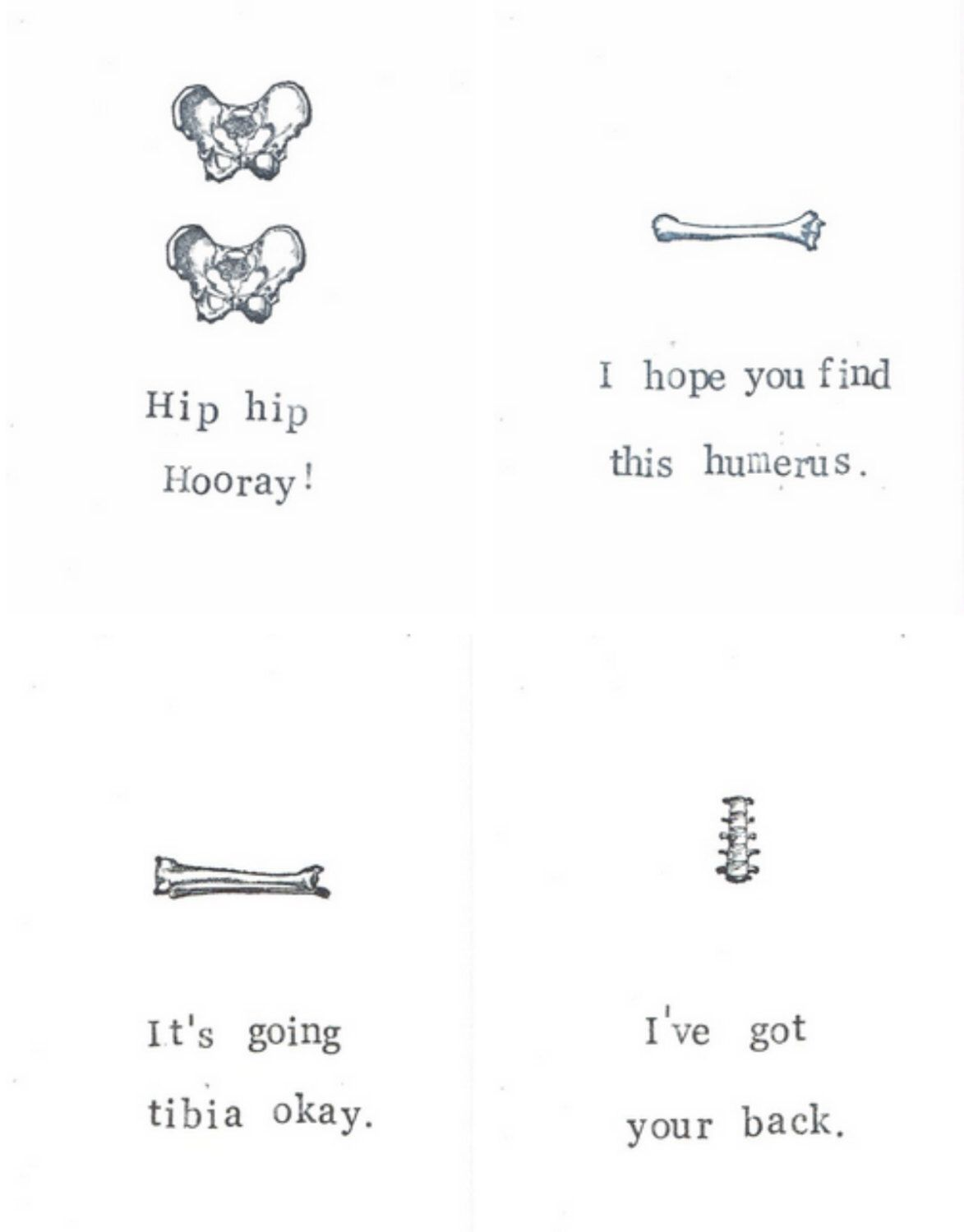 medical humor cards 4 pack | funny skeleton happy halloween science