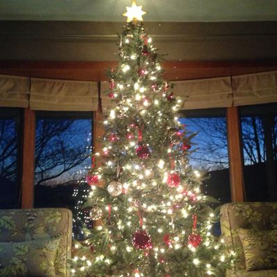 Our Facebook fans have some gorgeous holiday decorations! Here's Good  Housekeeping reader Pat B's Christmas tree. #ChristmasTrees - We Love Our Readers' Decked-Out Christmas Trees DIY Holiday Ideas