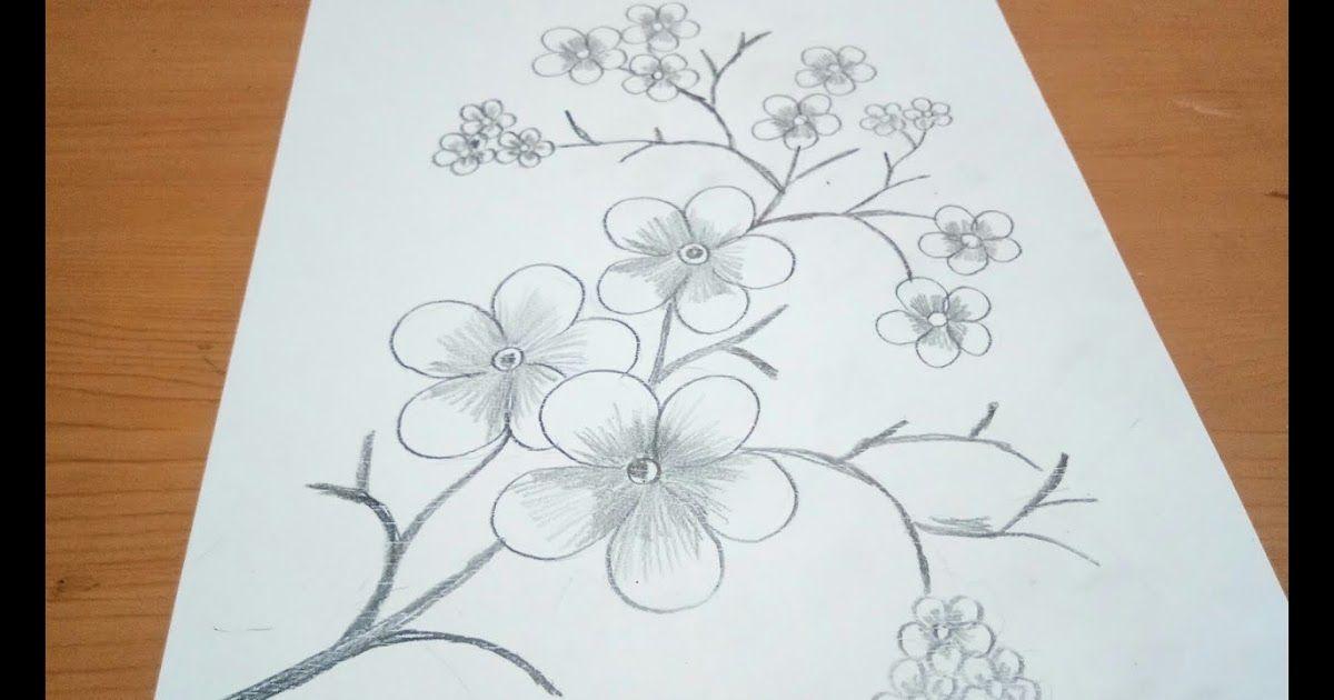Paling Keren 14 Foto Sketsa Gambar Bunga Sketsa Bunga Sakura Gambar Mewarnai Bunga Kreasi Warna 50 Gambar Sketsa Bunga Bunga Sakura Menggambar Bunga Bunga
