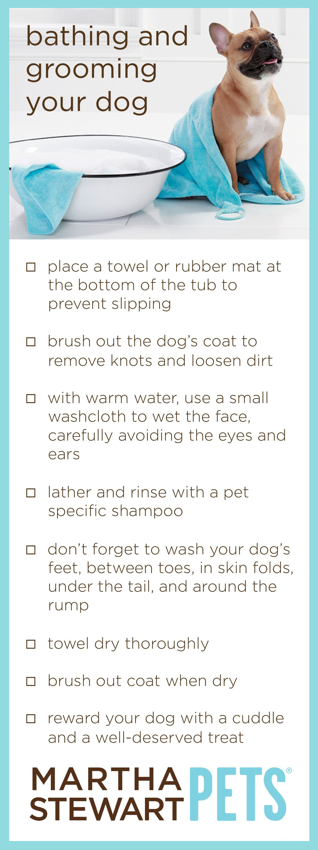 Martha stewart pets tips on bathing and grooming your dog
