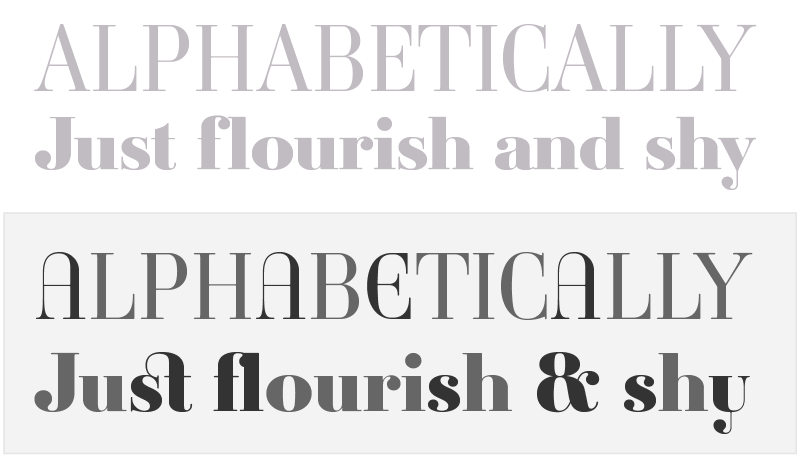 Ambroise, an exquisite Didot font in 14 series & 3 widths