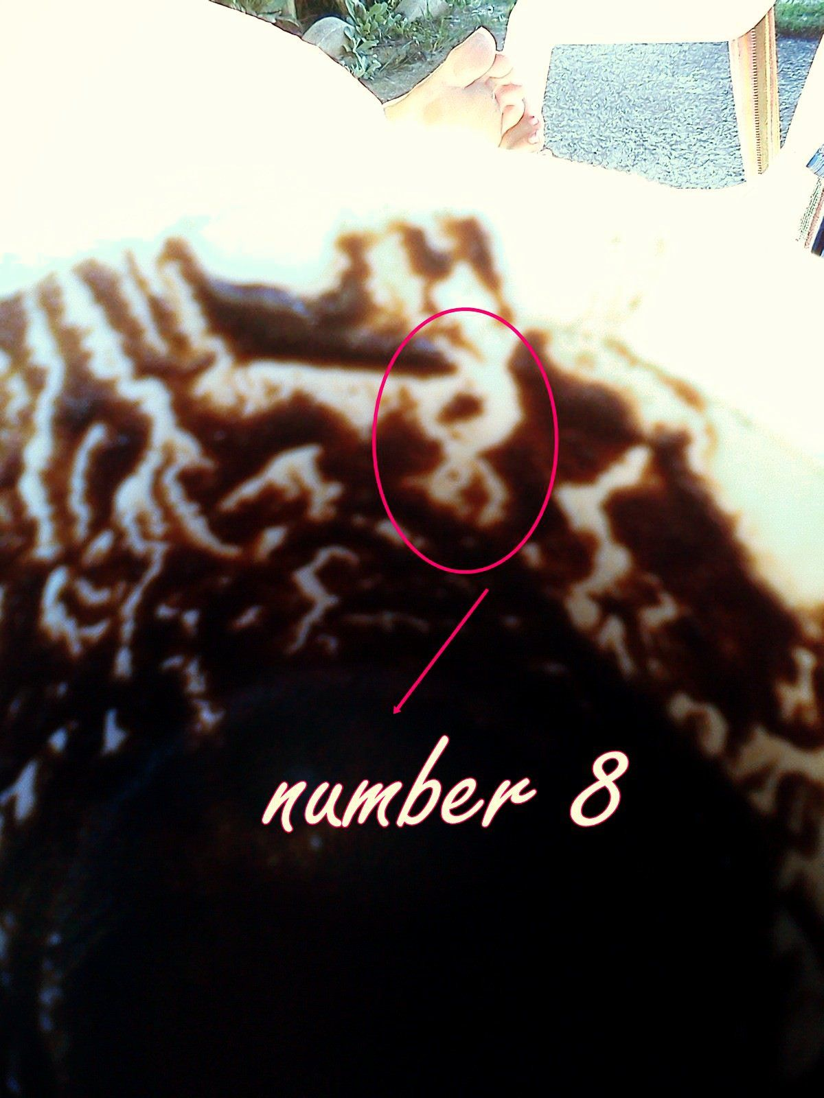 Number 8 in the cup httpcoffeereadingisfunwixcoffeeisfun number 8 in the cup httpcoffeereadingisfunwixcoffeeisfun number 8turkish coffeethe buycottarizona Image collections