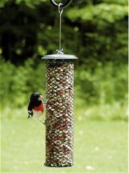Shelled Peanut Feeder Bird Feeders Peanut Bird Feeder Glass Bird Feeders