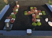 grabbepflanzung herbst #grabbepflanzungherbst Grave planting in autumn 2018 #grabbepflanzungherbst Grave planting in autumn 2018 -  - #Autumn #Grave #Planting