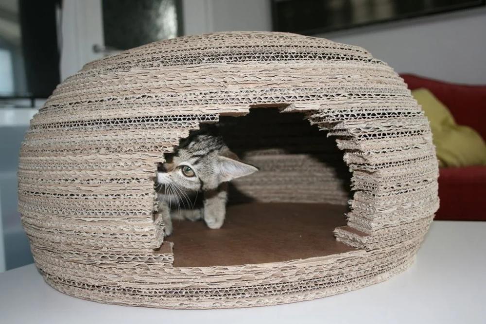 Cardboard Cat Igloo House In 2020 Igloo House Cardboard Cat