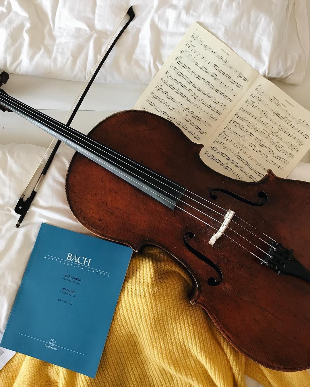 180 Ideas De Violonchelo Violonchelo Musica Violines