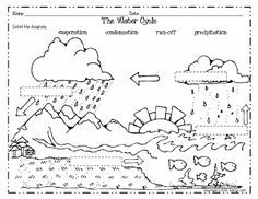 Worksheets Water Cycle Worksheet free science worksheet water cycle heres some activities from a couple of my newest science