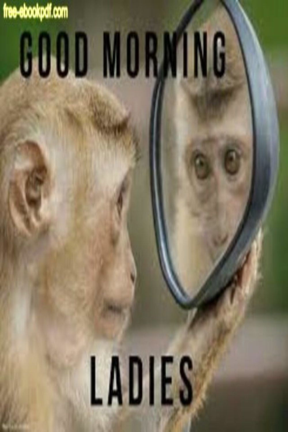 Funny Ways To Say Good Morning Over Text Funny Good Morning Memes Funny Good Morning Images Good Morning Texts