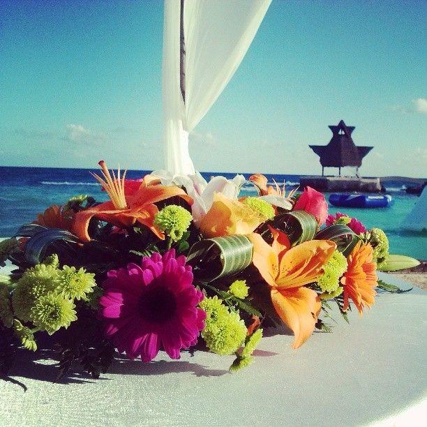 Dreams puerto aventuras tropical!!