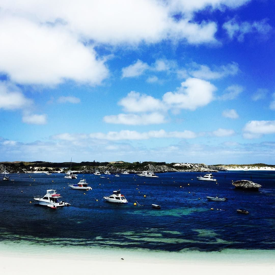Wishing I was here #rottnestisland #placetobe #takemeback #favorite #beach #boats #reef #love #happinessishere by aleecialyne http://ift.tt/1L5GqLp