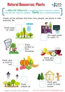 Natural Resources Worksheets For Kindergarten