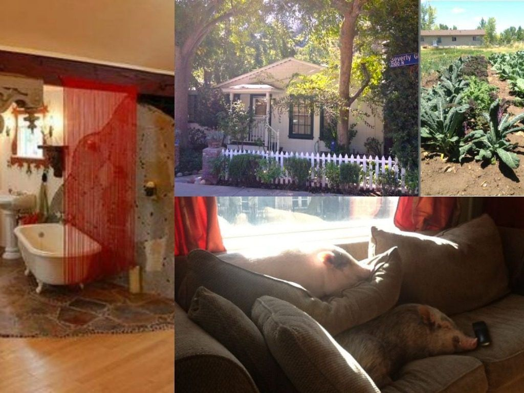 Spot The Flaws In These Seemingly Normal Craigslist Rentals