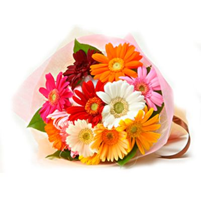 12 Multicolour Gerberas Bouquet Online Flower Delivery Flower Delivery Buy Flowers Online