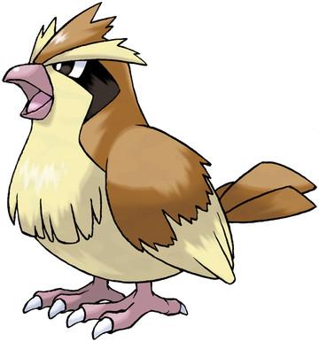 Pidgey Pokedex Stats Moves Evolution Locations Pokemon Database 151 Pokemon Pokemon Firered All 151 Pokemon