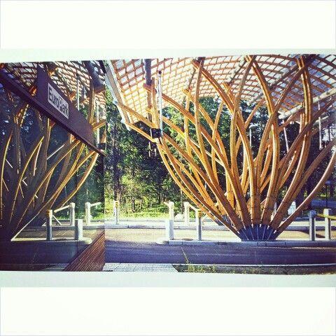#Architecture #Wood #Desing            UmTrabalhoBelissimo  #Inspiração