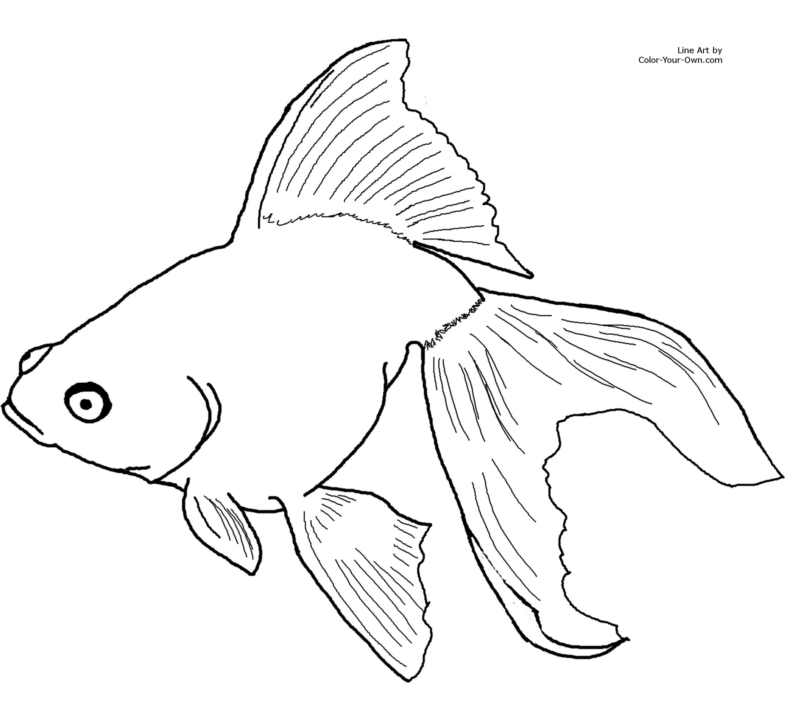 most kids adore coloring so this goldfish coloring activity of a