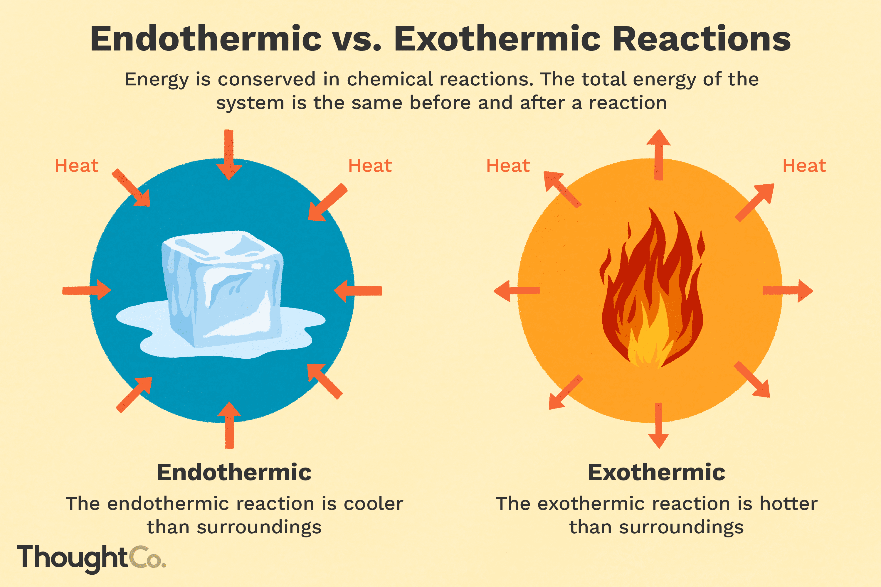 Understanding Endothermic And Exothermic Reactions