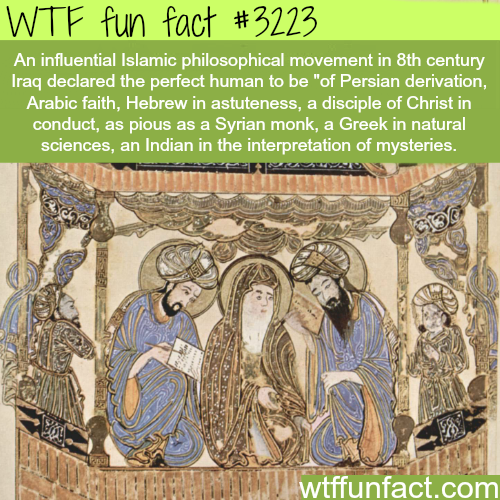 How the perfect human should be? - WTF fun facts