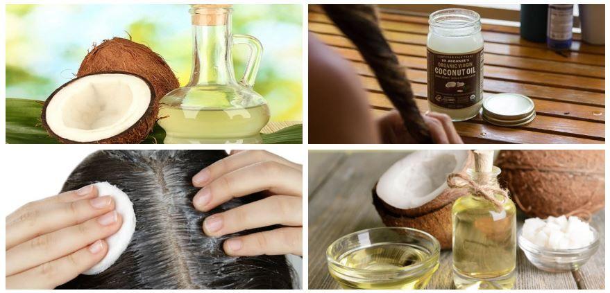 فوائد وأضرار زيت جوز الهند للشعر مع أفضل وصفاته لعلاج مشاكل الشعر Coconut