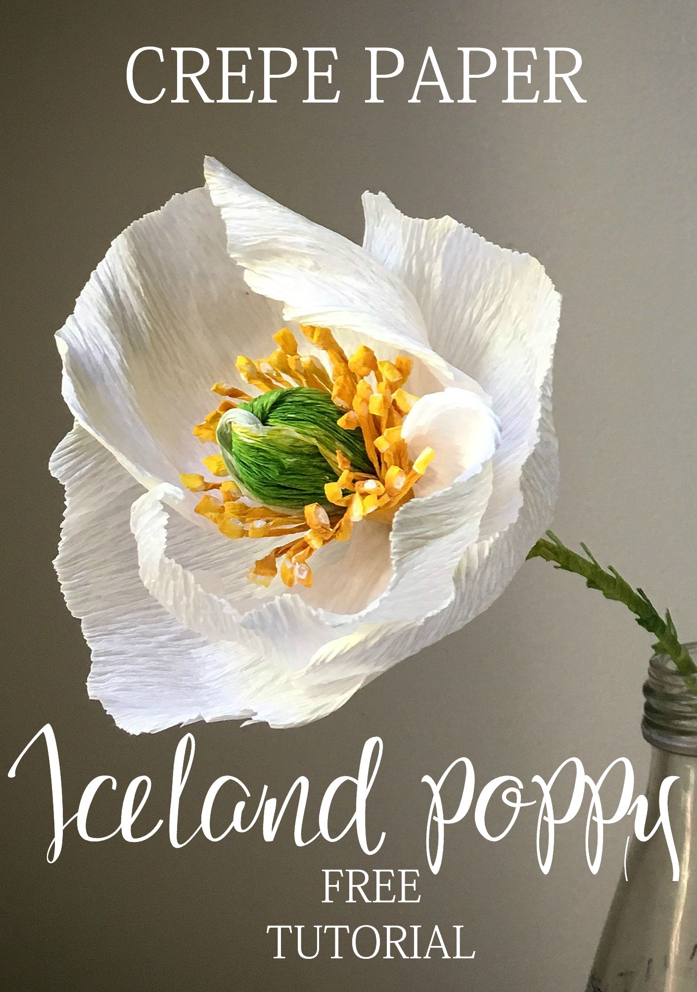 Crepe paper Iceland poppy – are you ready to try? - The Paper Heart