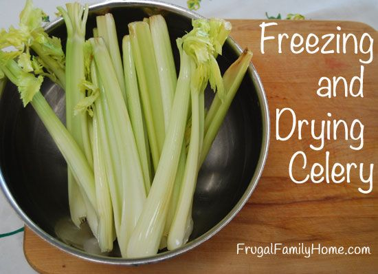 Does Celery Just Wilt In Your Refrigerator Before You Can Use It Up Don
