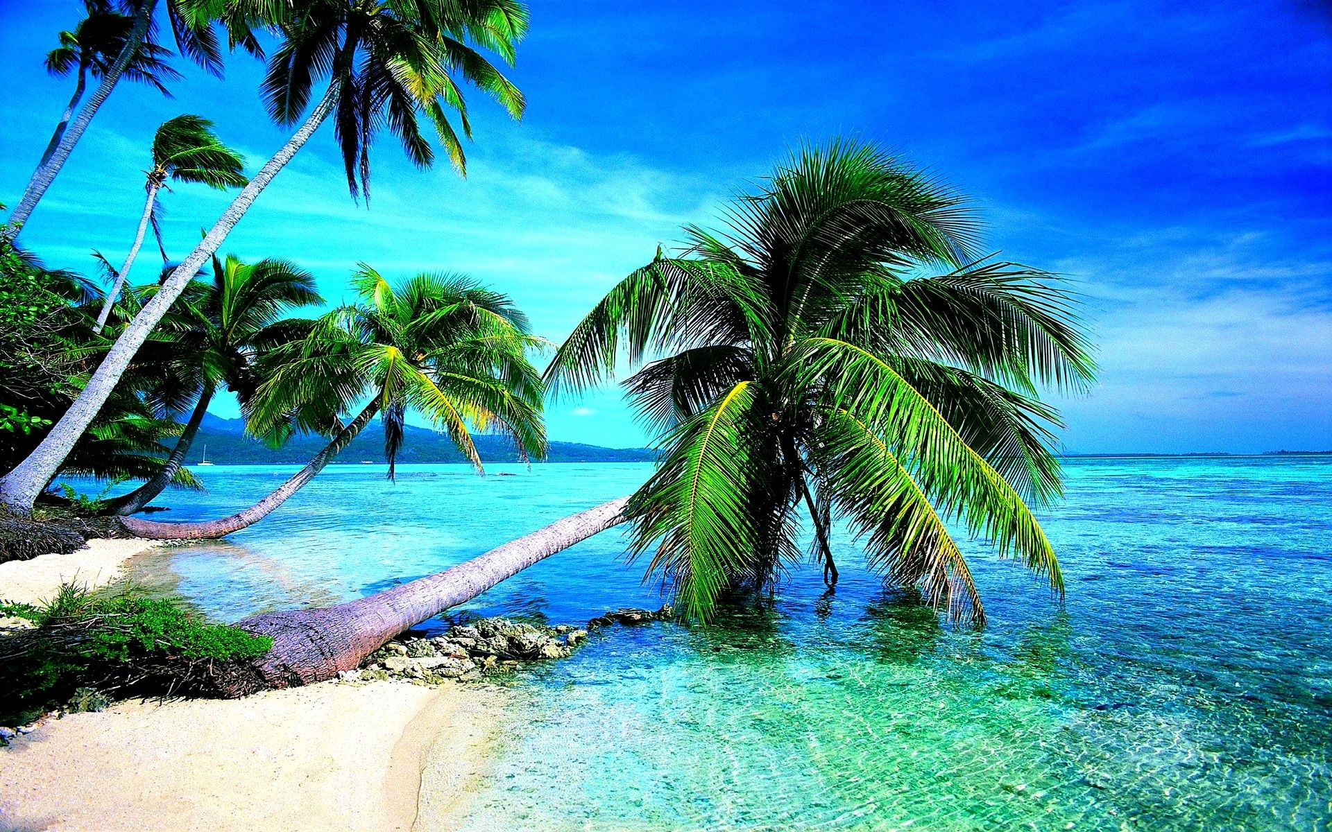 Hd Tropical Island Beach Paradise Wallpapers And Backgrounds: Desktop Backgrounds Tropical