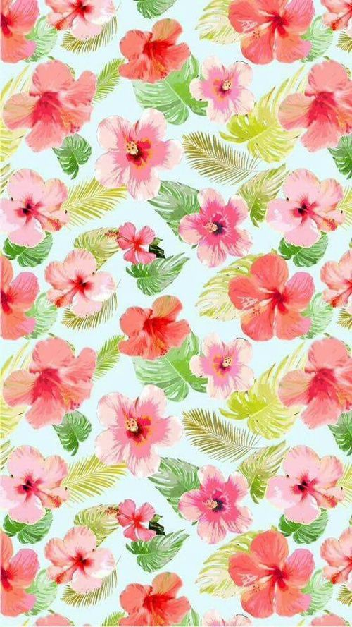 Image de flores fondo de pantalla and walpaper fondos for Fondos lindos para celular
