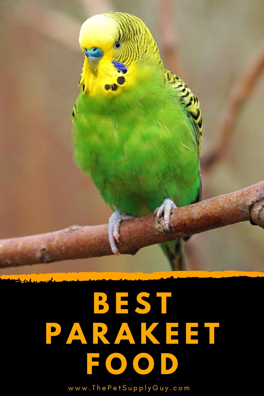 Best Parakeet Food Brand The Pet Supply Guy In 2020 Parakeet Food Parakeet Budgie Food