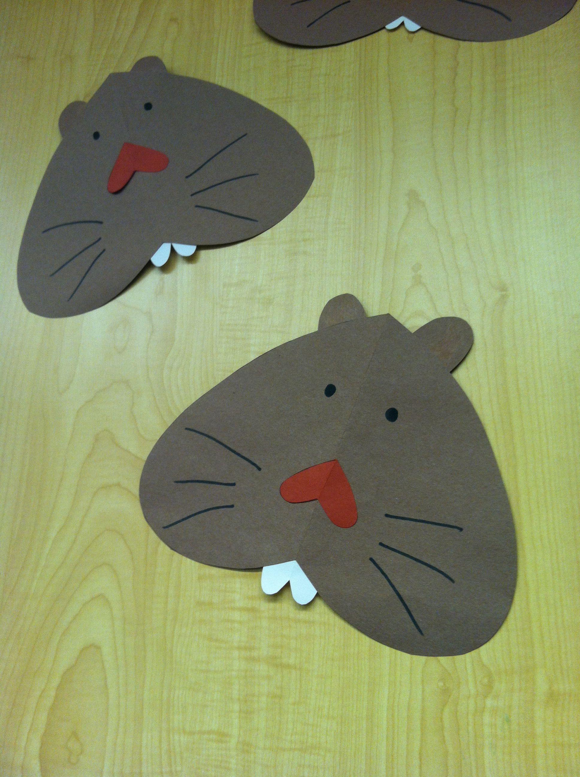 Winter Hibernation For Preschool Age 3