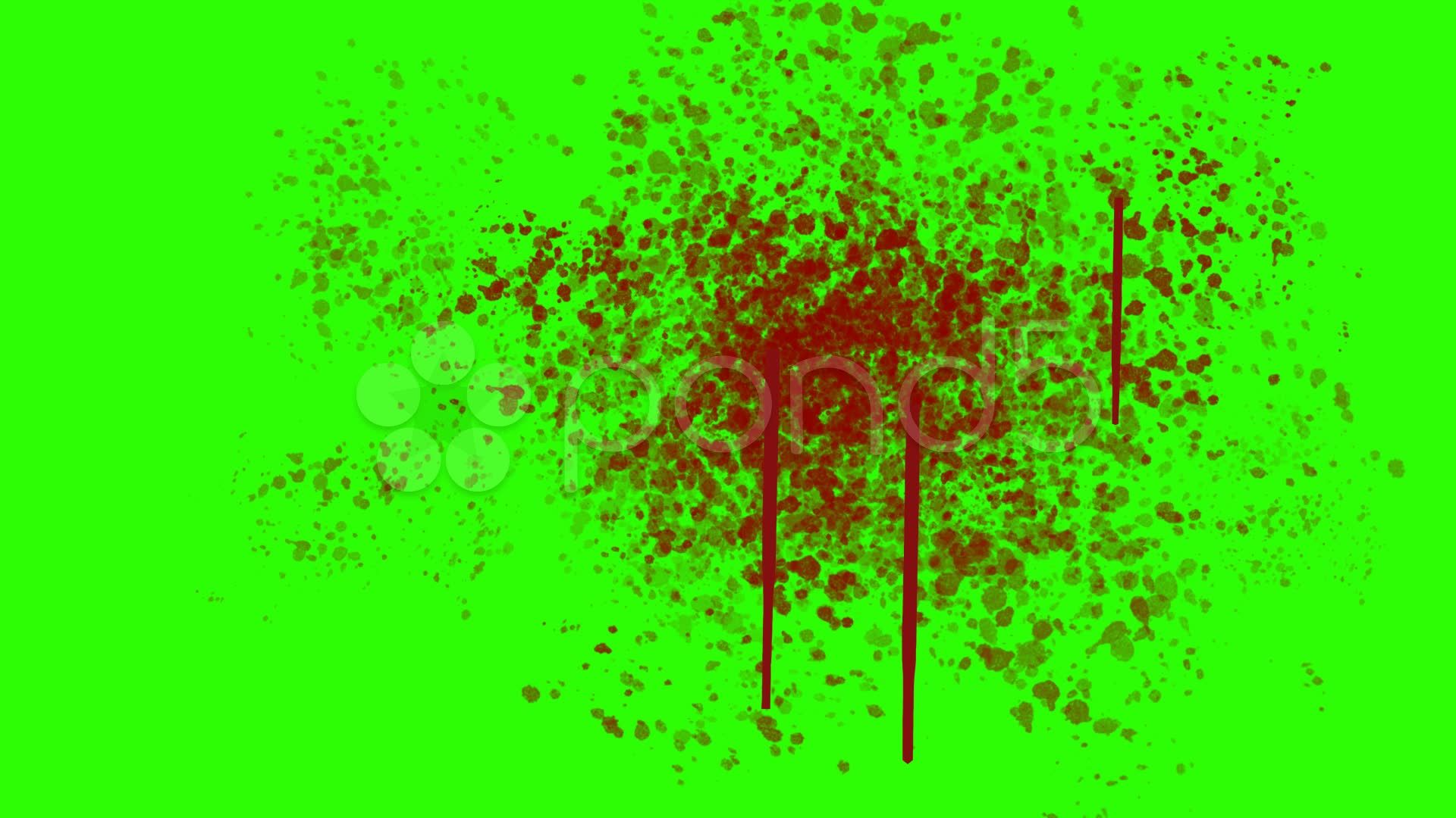 Blood Splatter on the Wall on a Green Screen Background Stock