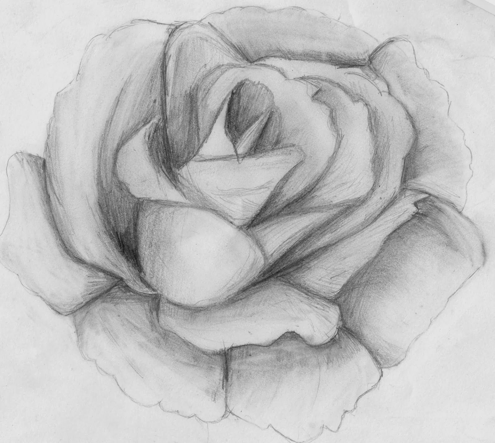 Lapiz Sombra Dibujos De Flores