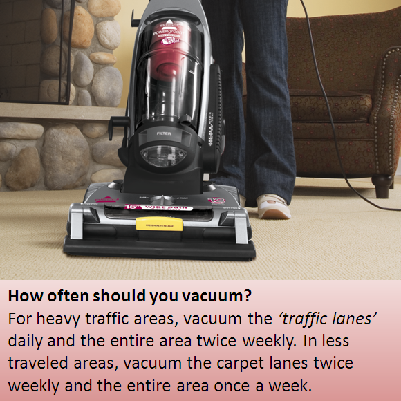 How Often Should You Vacuum Helping Cleaning Clean Freak Up Steam Cleaners