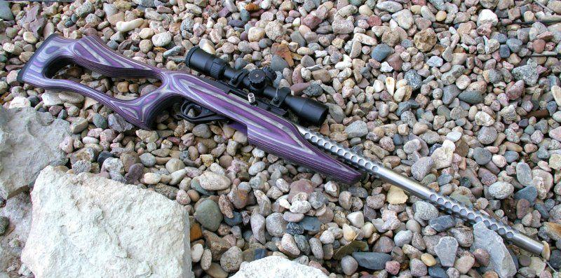 Boyd 10 22 Evolution And Tacticool Stocks Alloutdoor Com Guns Guns Hand Guns Weapons