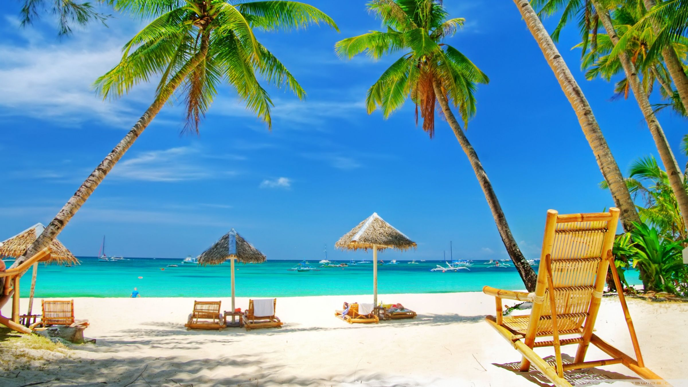 Download Tropical Paradise Beach Hd Wallpaper Beach Place Tropical Paradise Beach Beach Wallpaper