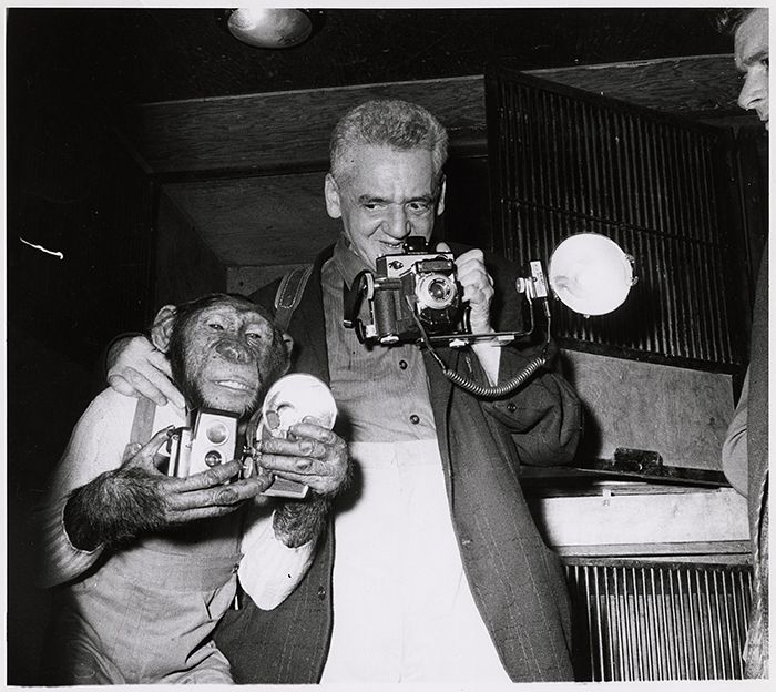 Random Picture Perfect Pinterest Weegee Photography And
