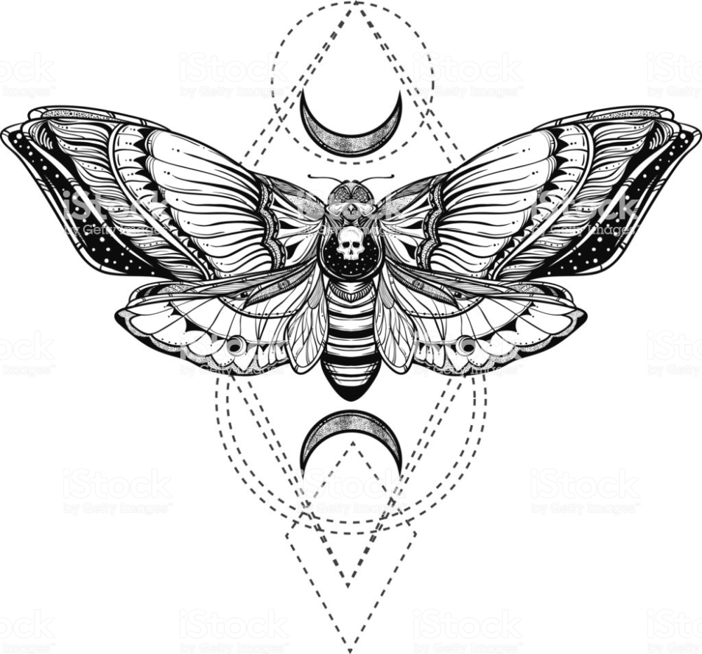 Photo of black and white deadhead butterfly doodle illustration