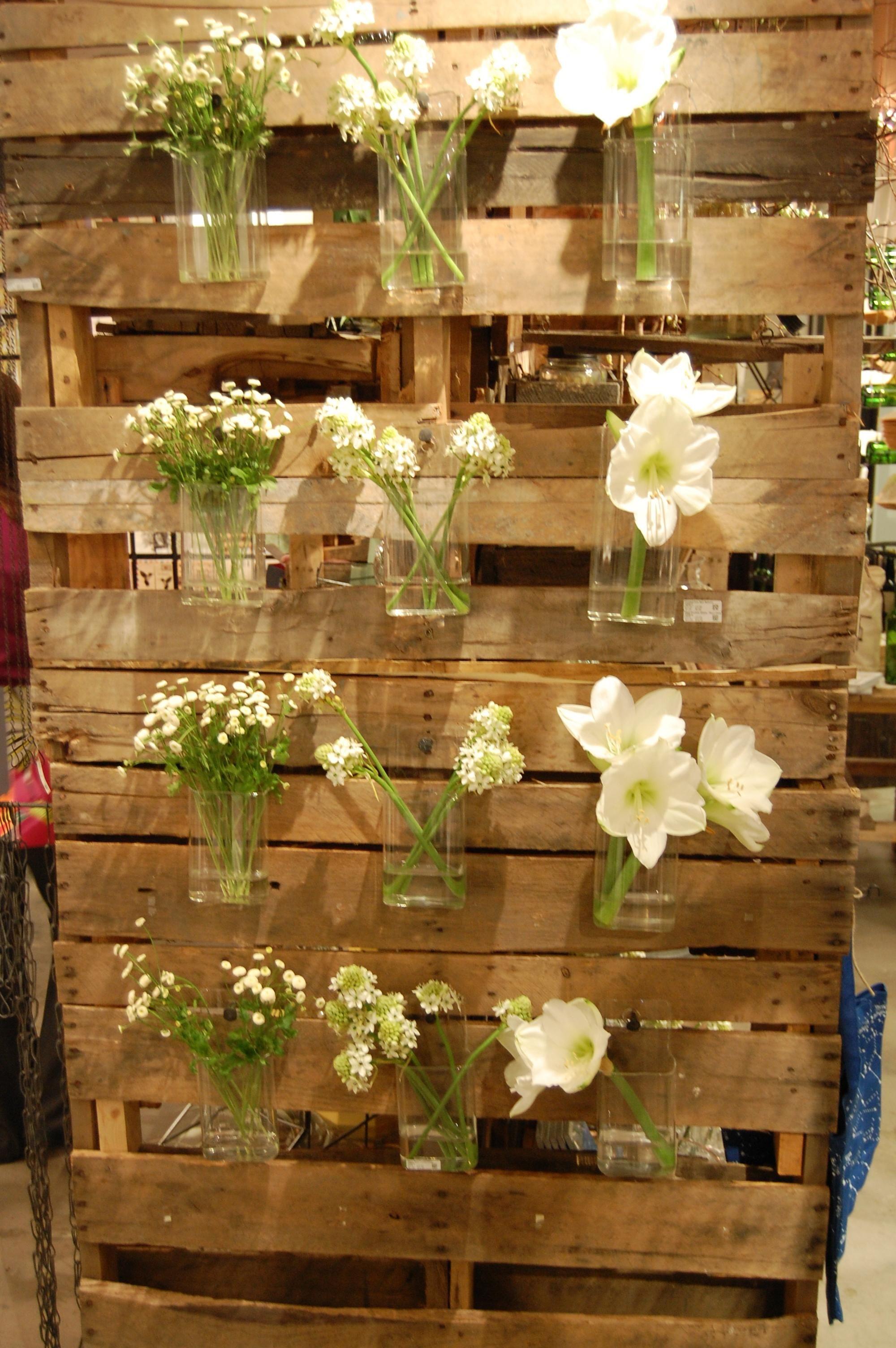 what\'s blooming in the garden | My Garden Shop | Pinterest ...