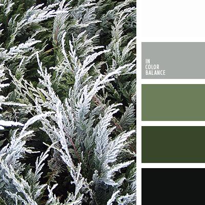 цветовая палитра 2483 Green Colour Palette Black Color Palette Grey Color Scheme