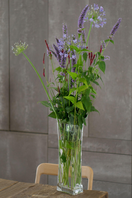 Bouquet of Agastache Black Ader, Agapanthus Nothern Star and Persicaria A. Atrosanguinea @abaton_arch #feryplantas⠀ .⠀ .⠀ .⠀ .⠀ .⠀ .⠀ #landscapedesign #gardendesign #gardenphotographer #gardenphotography #luxuryhomes #garden_styles #plantingdesign #botanicgarden #instagarden #perennialborder #bouquet #agastache #agapanthusnothernstar #persicaria