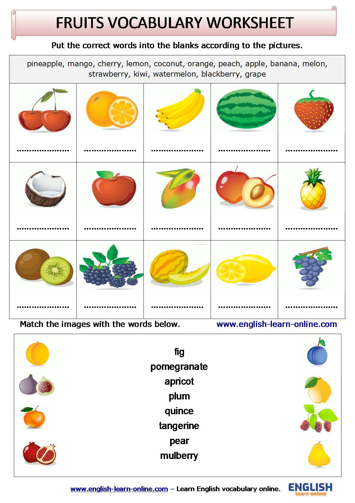 Fruits Vocabulary Activity Worksheet In