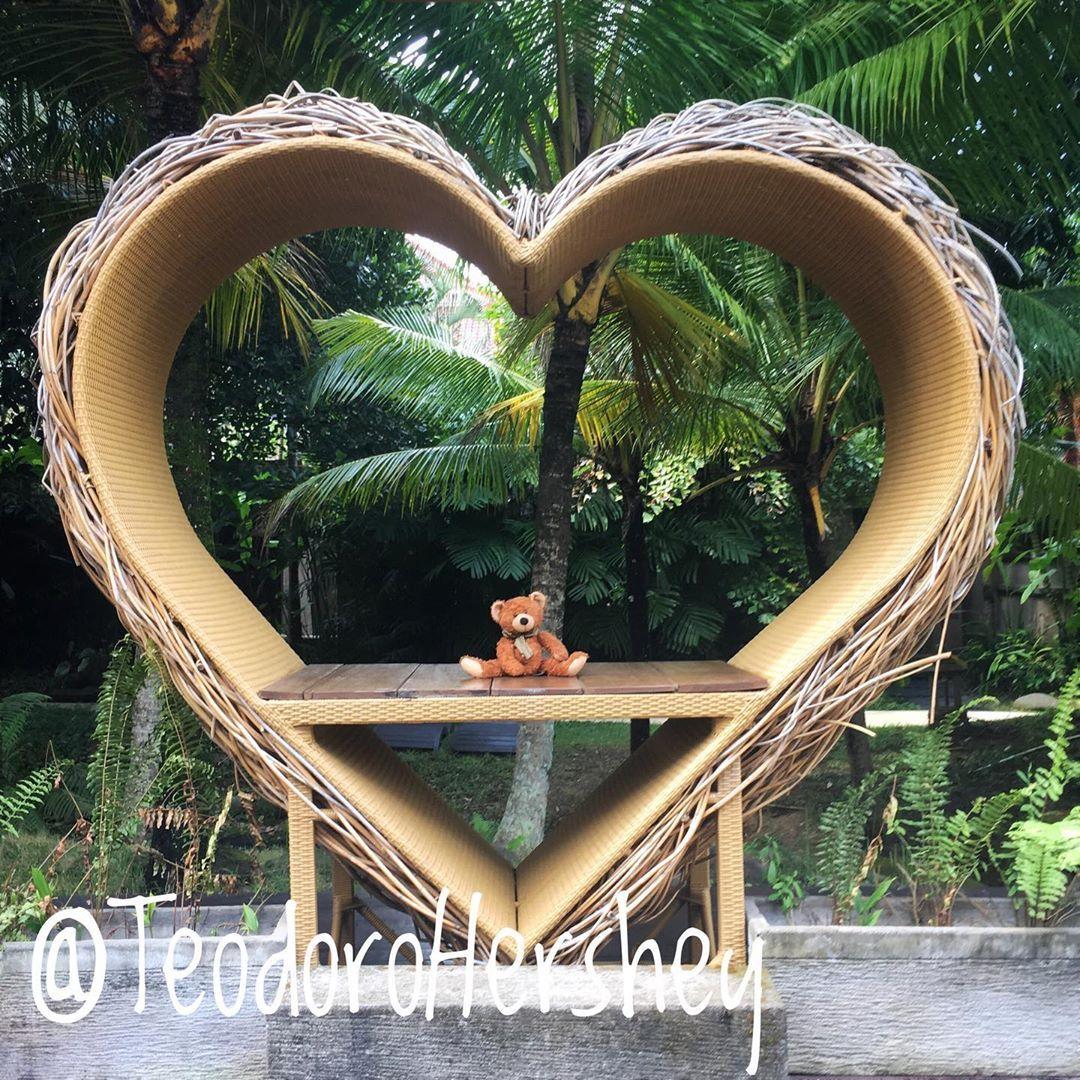 Awwwwww!!! Quién no se enamora de mi con este tipo de fotos?!!! 🤣🙈 #Teo #Teodoro #oso #ours #osezno #ourson #bear #teddy #teddybear #animal #peluche #🐻 #heart #corazon #coeur #instapic #love #amor #amour #amore #bali #ubud #indonesia #lover #lovely #happy #feliz #mignon #cosita