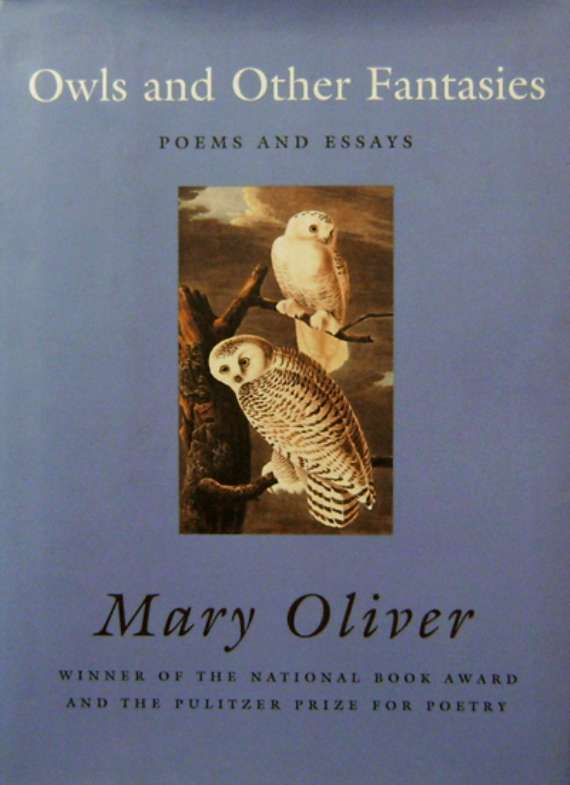 Mary oliver owls essay