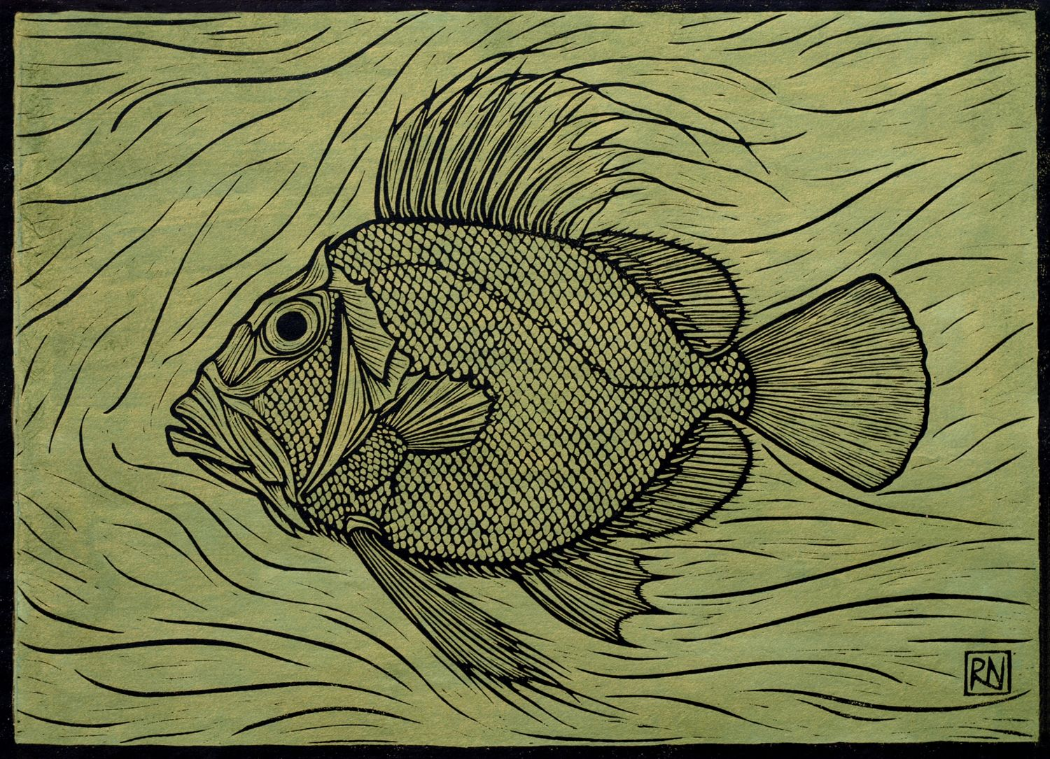 Pin by Becky Wienges on Printing/stamps | Pinterest | John dory ...