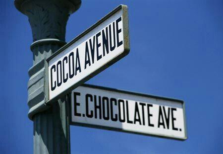 Resultado de imagem para cocoa avenue