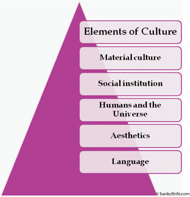 5 Elements of Culture (With images) | Culture, Elements ...