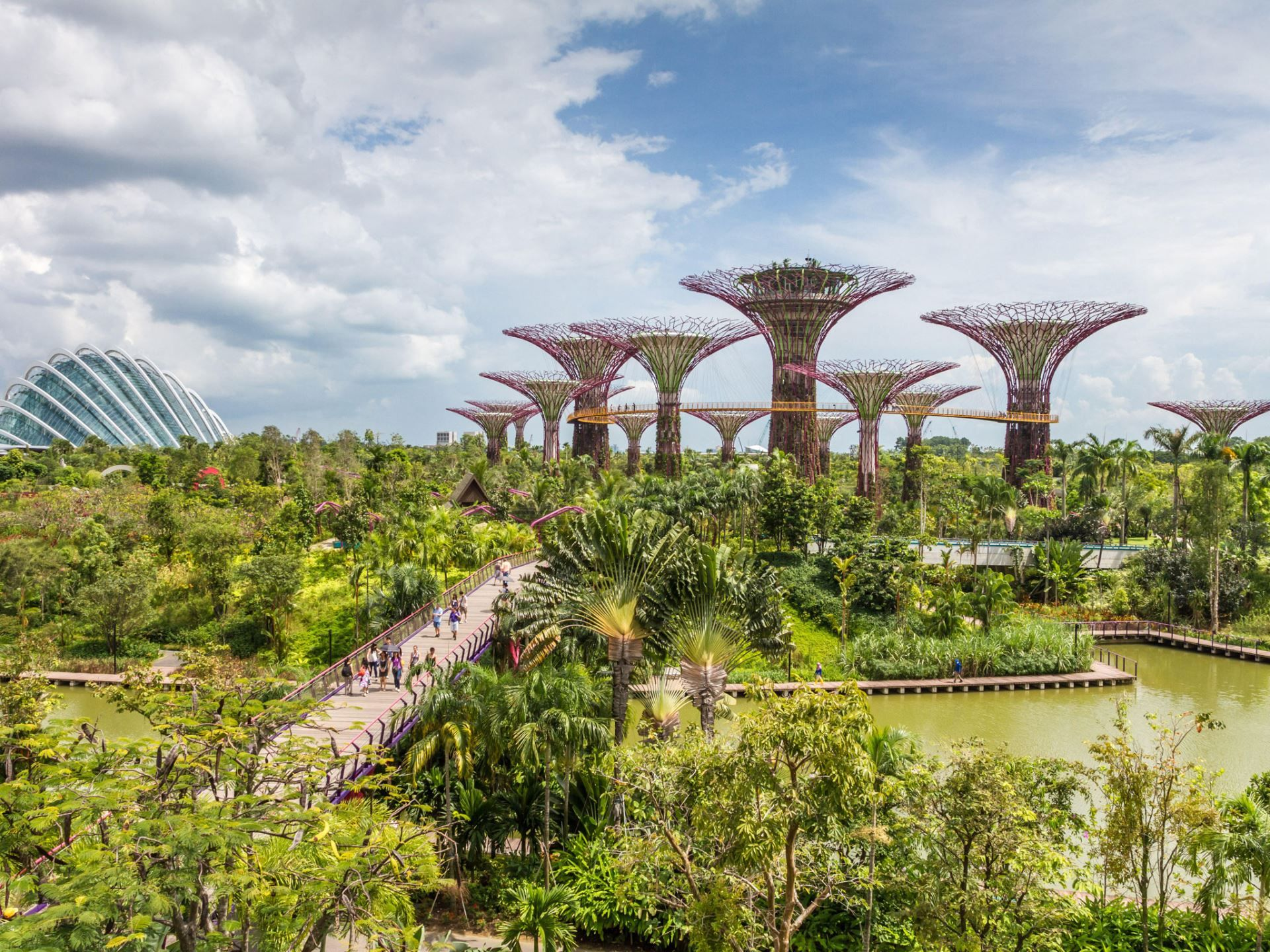 ff3c577d780c3c262480cc7d5fd576b4 - How Long To See Gardens By The Bay