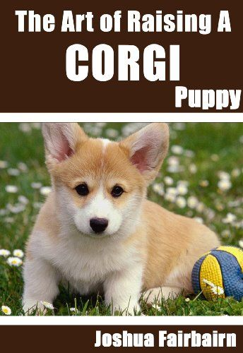 The Art Of Raising A Corgi Puppy From Puppyhood To Adult Dog The - 26 dogs puppyhood photos